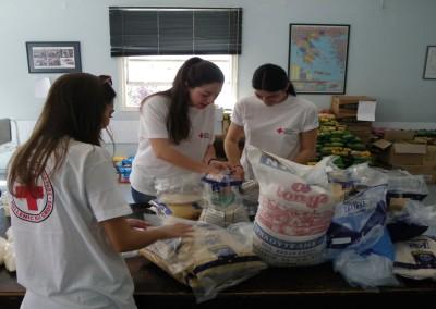 Εθελοντική δραστηριότητα του Περιφερειακού Τμήματος Ε.Ε.Σ. Πάτρας - Ελληνικός Ερυθρός Σταυρός – Τομέας Κοινωνικής Πρόνοιας – Υπηρεσία Εθελοντών