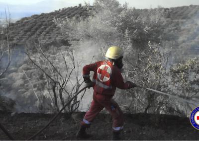 Τομέας Σαμαρειτών, Διασωστών και Ναυαγοσωστών - Πυρκαγιές Αττικής, 2007
