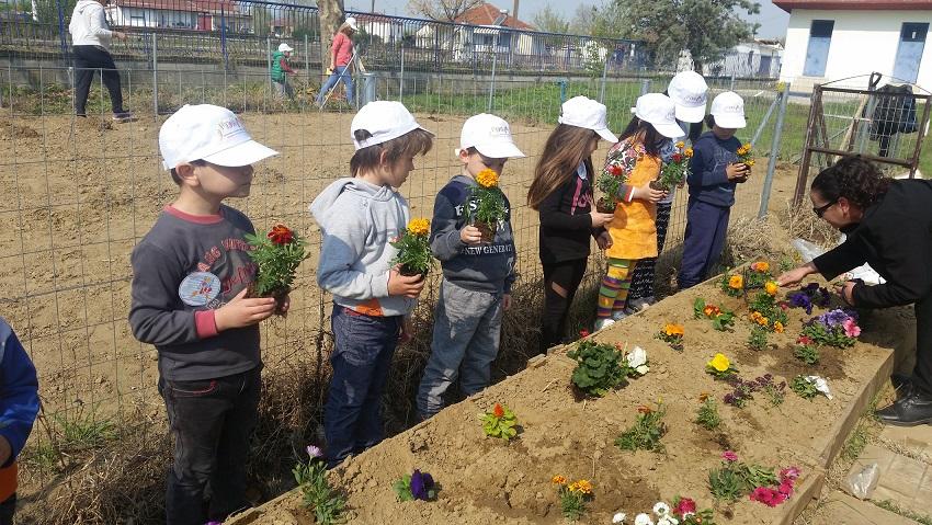 Σχολική εβδομάδα εθελοντισμού – Επίσκεψη στην «Ηλιαχτίδα» Σερρών