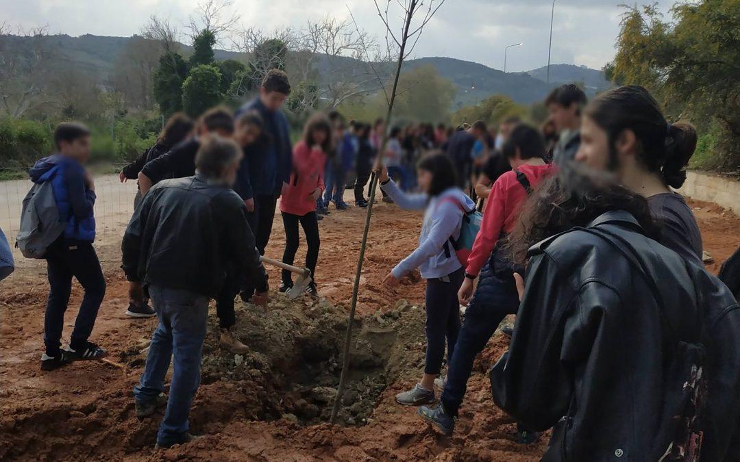 """Δεντροφύτευση στις Καλύβες Χανίων από σχολεία του δικτύου """"Νοιάζομαι και δρω"""" Χανίων"""