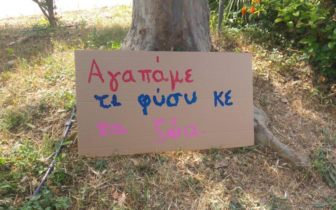 Τρία Νηπιαγωγεία της Παλλήνης ενώνουν τις φωνές τους για το Περιβάλλον – Νοιάζομαι και Δρω-Ενεργός Πολίτης