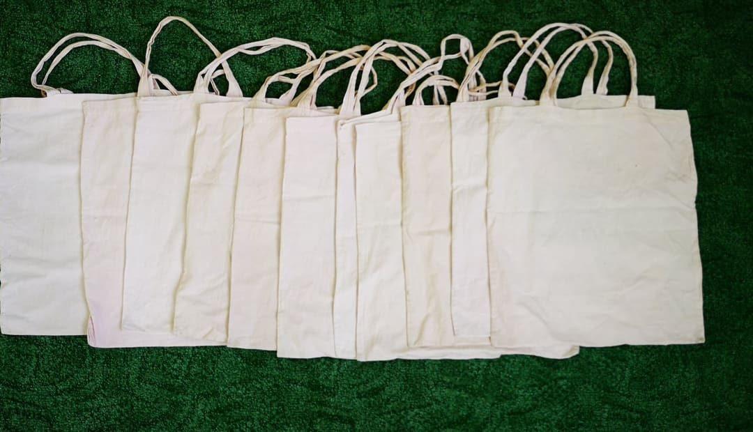 Οικολογικές τσάντες για τους μαθητές του 1ου Νηπιαγωγείου Πάργας